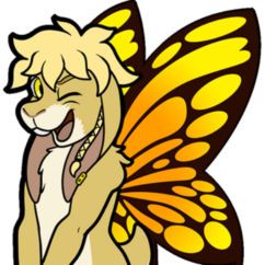 Profile picture of Papillon